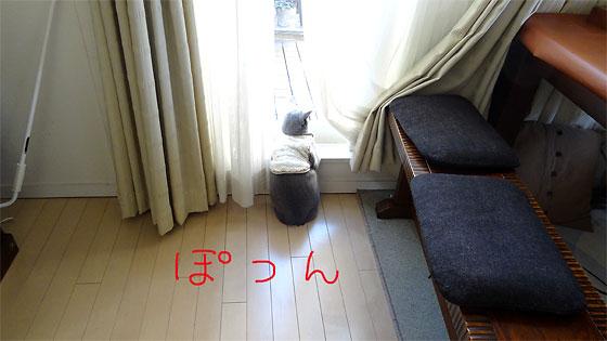 DSC02865-01.jpg